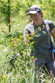 lauren-reker-clearing-vegetation_48754333061_o